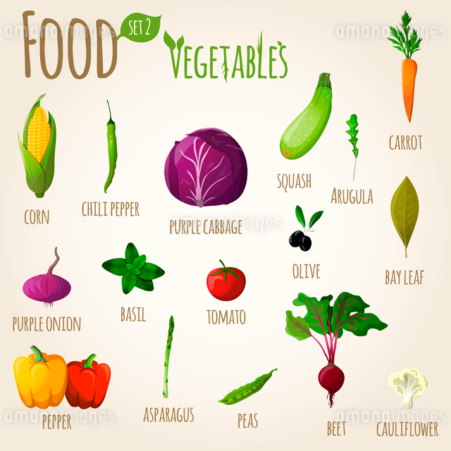 Food vegetables doodle set of corn squash cabbage carrot vector illustrationのイラスト素材 [FYI03092032]