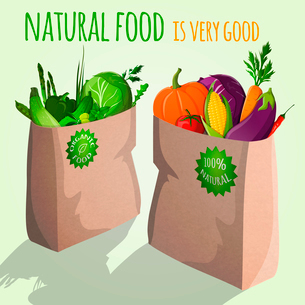 Natural  food is very good vegetarian organic vegetables in paper bag with emblem vector illustratioのイラスト素材 [FYI03092041]