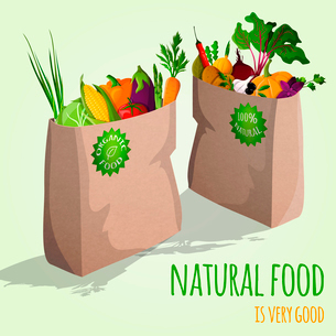Natural  food is very good organic vegetables in paper bag concept vector illustrationのイラスト素材 [FYI03092042]