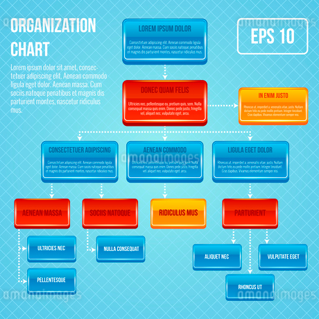 Organizational chart 3d concept business work hierarchy flowchart structure vector illustrationのイラスト素材 [FYI03092088]