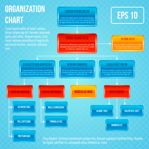 Organizational chart infographic business work hierarchy flowchart structure vector illustrationのイラスト素材 [FYI03092091]