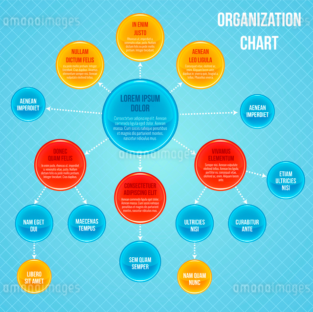 Organizational chart infographic business flowchart work process structure vector illustrationのイラスト素材 [FYI03092092]