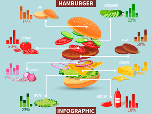 Hamburger ingredients with meat cheese tomato salad bun cucumber infographic vector illustrationのイラスト素材 [FYI03092505]