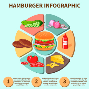 Hamburger sandwich with meat cheese tomato lettuce bun cucumber pie chart infographic vector illustrのイラスト素材 [FYI03092508]
