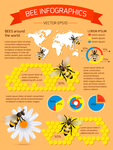 Honey bee on daisy and comb background infographic with world map vector illustrationのイラスト素材 [FYI03092516]