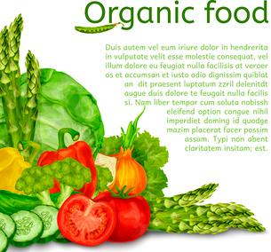 Vegetable organic food set of cabbage tomato paprika background vector illustrationのイラスト素材 [FYI03092569]