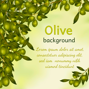 Organic natural food olive tree branch background vector illustrationのイラスト素材 [FYI03092577]