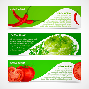 Vegetable organic food banners horizontal with chili pepper salad tomato isolated vector illustratioのイラスト素材 [FYI03092585]