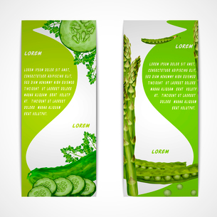 Green vegetable organic food vertical banners set with parsley peas cucumber isolated vector illustrのイラスト素材 [FYI03092588]