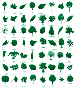 Trees icon3. Collection of icons of trees and leaves. A vector illustrationのイラスト素材 [FYI03092814]