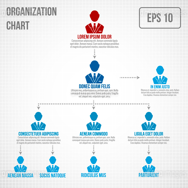 Organizational chart infographic business hierarchy boss to employee structure vector illustrationのイラスト素材 [FYI03092980]