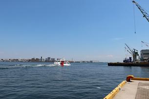 神戸港の風景の写真素材 [FYI03099884]