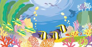 色とりどりなサンゴや海藻の中を泳ぐ南の海の魚達のイラスト素材 [FYI03102235]