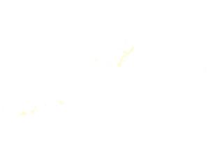 都道府県ポリゴン地図EPS沖縄県(境界無)のイラスト素材 [FYI03102278]