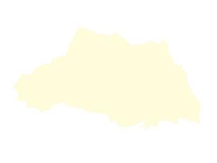都道府県ポリゴン地図EPS埼玉県(境界有)のイラスト素材 [FYI03102289]