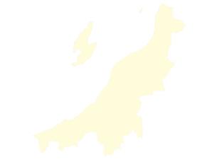 都道府県ポリゴン地図EPS新潟県(境界有)のイラスト素材 [FYI03102292]