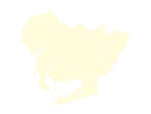 都道府県ポリゴン地図EPS愛知県(境界有)のイラスト素材 [FYI03102300]