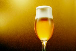 金色背景のグラスのビールの写真素材 [FYI03102340]
