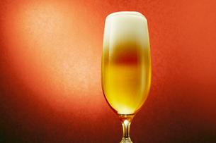 赤色背景のグラスのビールの写真素材 [FYI03102351]