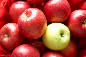 りんごの集合の写真素材 [FYI03102952]