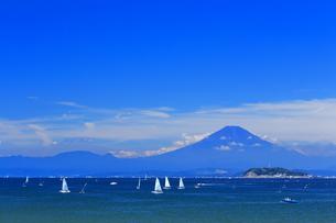 夏富士と湘南のヨットの写真素材 [FYI03104211]