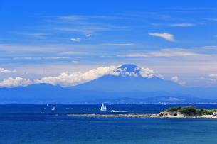 長者ヶ崎からの夏富士の写真素材 [FYI03104217]