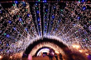 神奈川県 宮ヶ瀬のクリスマスイルミネーションの写真素材 [FYI03104397]