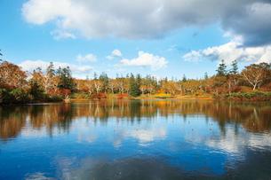 沼畔から秋の神仙沼の写真素材 [FYI03104981]