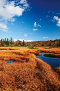 神仙沼湿原と小沼の写真素材 [FYI03104985]