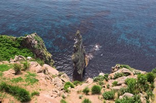 赤岩 天売島の写真素材 [FYI03105598]