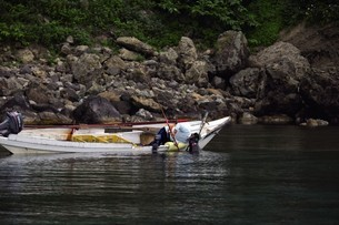 天売島のウニ漁の写真素材 [FYI03105789]