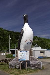 天売島の風景の写真素材 [FYI03105816]