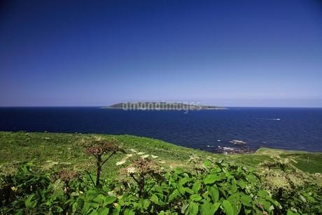焼尻島から見える天売島の写真素材 [FYI03105847]