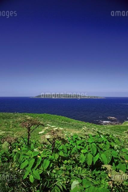 焼尻島から見える天売島の写真素材 [FYI03105854]