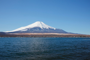 山中湖から望む冬の富士山の写真素材 [FYI03106142]