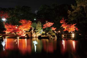 錦秋の玄宮園ライトアップの写真素材 [FYI03106919]