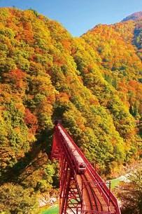 黒部峡谷トロッコ電車の写真素材 [FYI03107425]