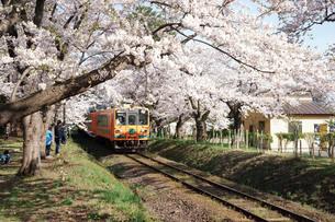 津軽鉄道・走れメロス号の写真素材 [FYI03107434]