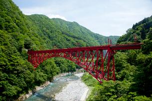 やまびこ遊歩道より眺める黒部峡谷トロッコ列車の写真素材 [FYI03108009]
