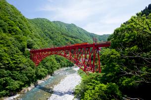 やまびこ遊歩道より眺める黒部峡谷トロッコ列車の写真素材 [FYI03108011]