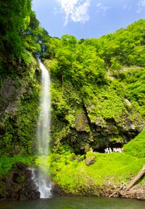 前谷川の上流に位置する阿弥陀ケ滝の写真素材 [FYI03108171]
