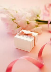 ピンクのスイートピーとギフトボックスの写真素材 [FYI03110437]