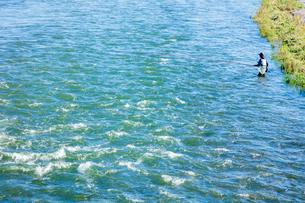 荒川の鮎釣り 栃木県の写真素材 [FYI03114736]
