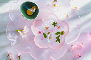 ガラス器と桜の花とお香の写真素材 [FYI03114738]
