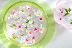ガラス器と桜の花の写真素材 [FYI03114747]