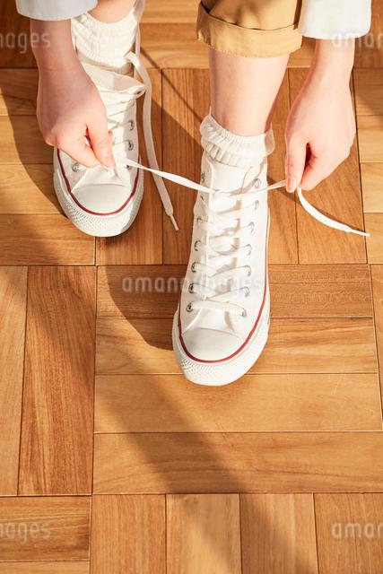 白いスニーカーを履く女性の足元の写真素材 [FYI03114827]