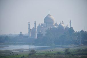 アグラ城から見えるタージ・マハルの写真素材 [FYI03114989]