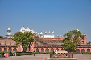 世界遺産アグラ城内の真珠モスクの写真素材 [FYI03115010]