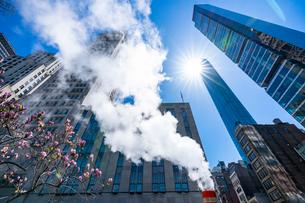 ミッドタウン マンハッタンの高級高層コンドミニアムと漂うスティームを照す太陽。の写真素材 [FYI03115074]