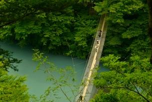 寸又峡温の夢の吊橋の写真素材 [FYI03115174]